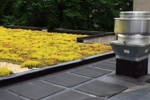 How Your Roof Can Save Money by Reducing Energy Costs